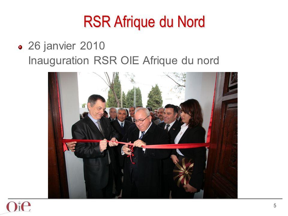 RSR Afrique du Nord 26 janvier 2010