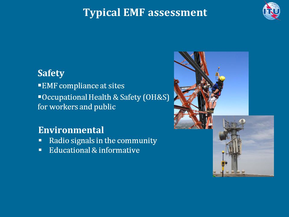 Typical EMF assessment