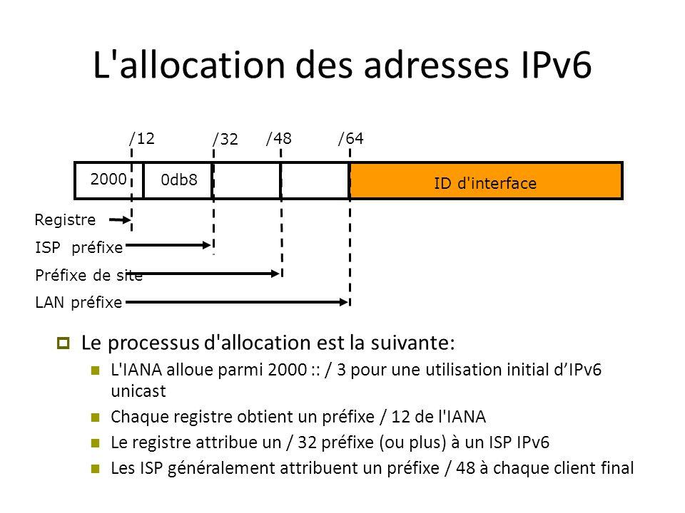 L allocation des adresses IPv6