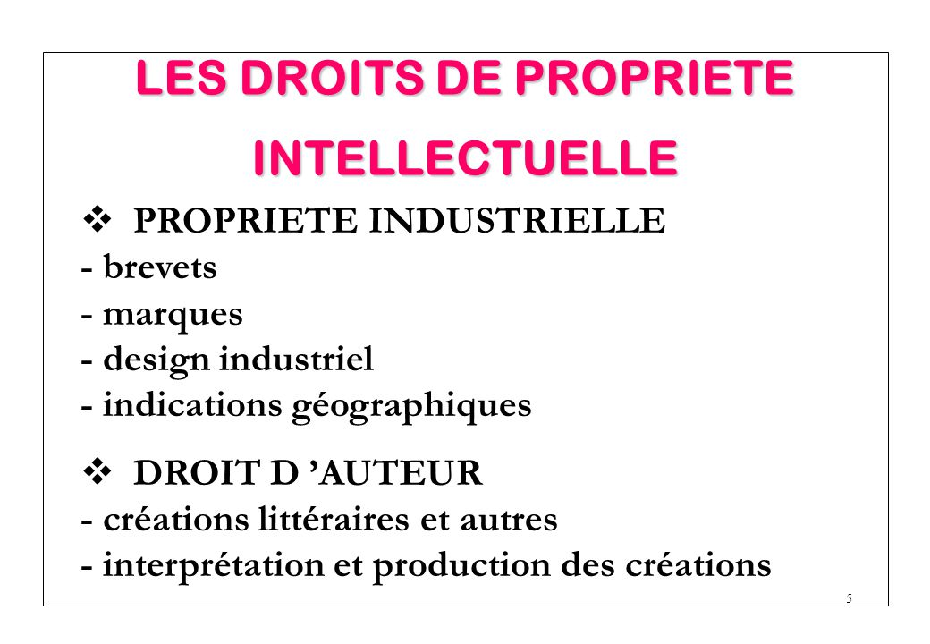 LES DROITS DE PROPRIETE INTELLECTUELLE