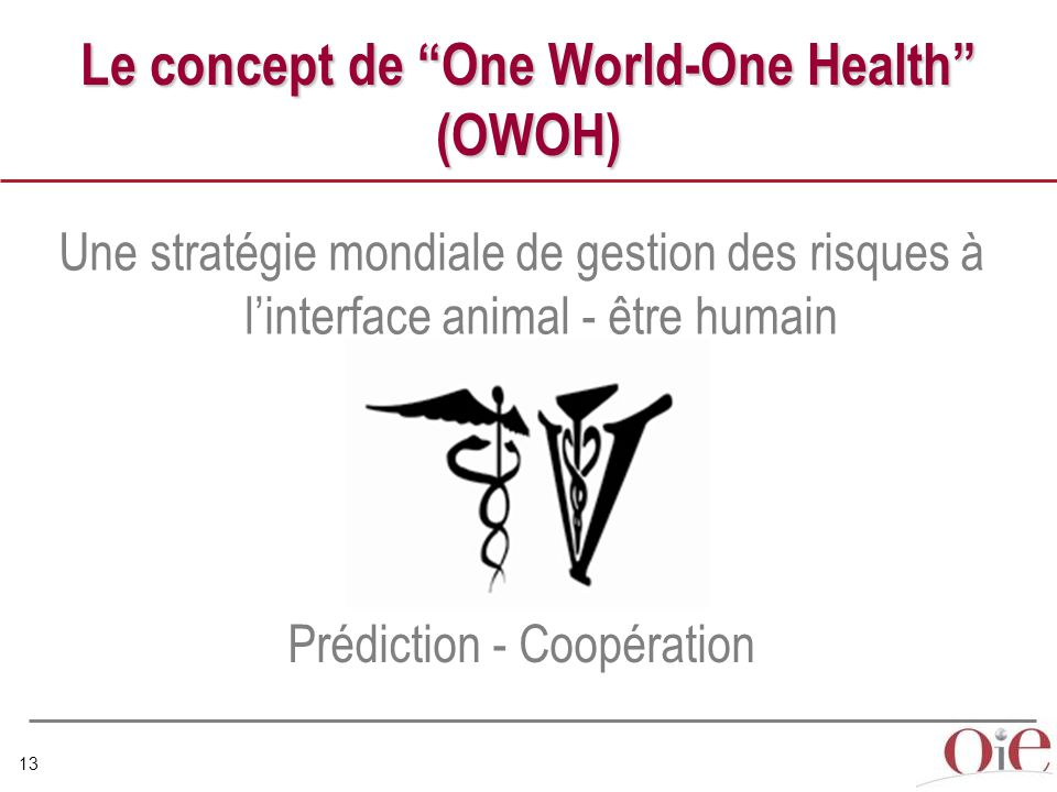 Le concept de One World-One Health (OWOH)