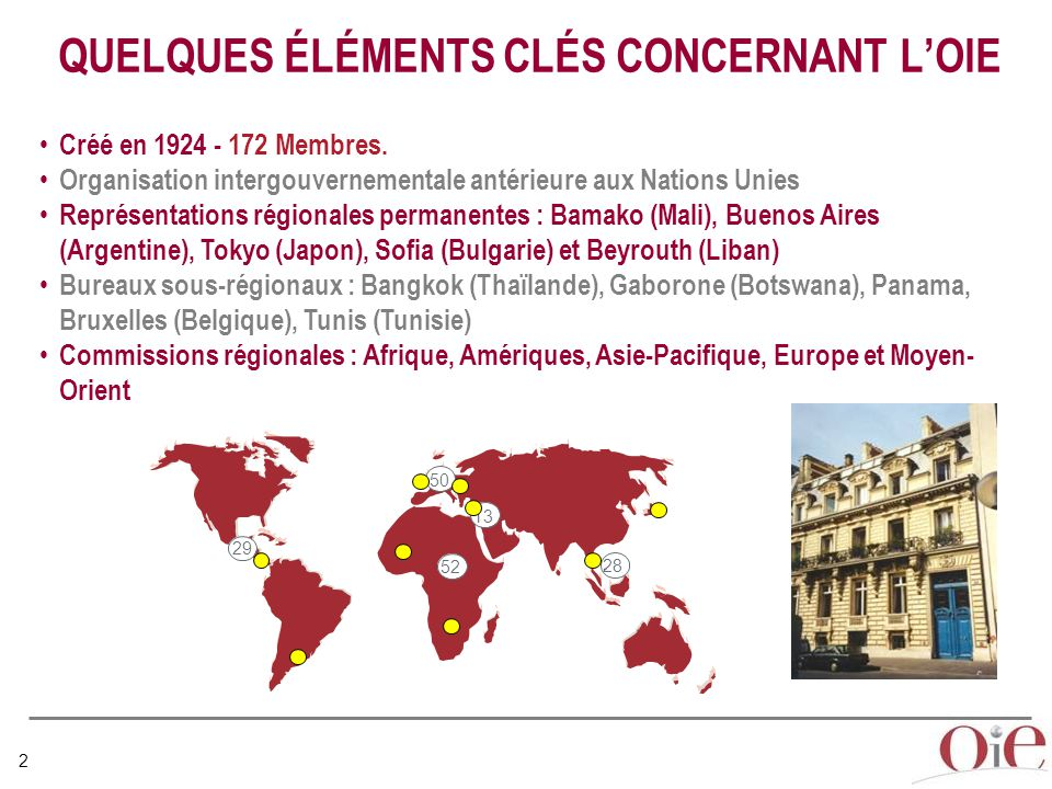 QUELQUES ÉLÉMENTS CLÉS CONCERNANT L'OIE
