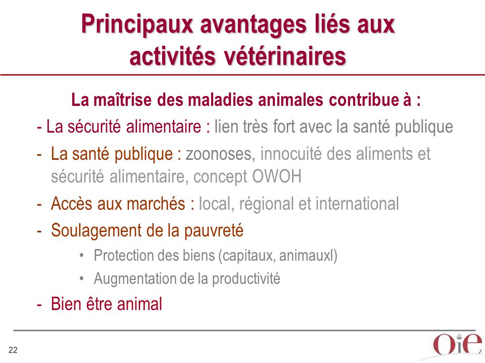 Principaux avantages liés aux activités vétérinaires