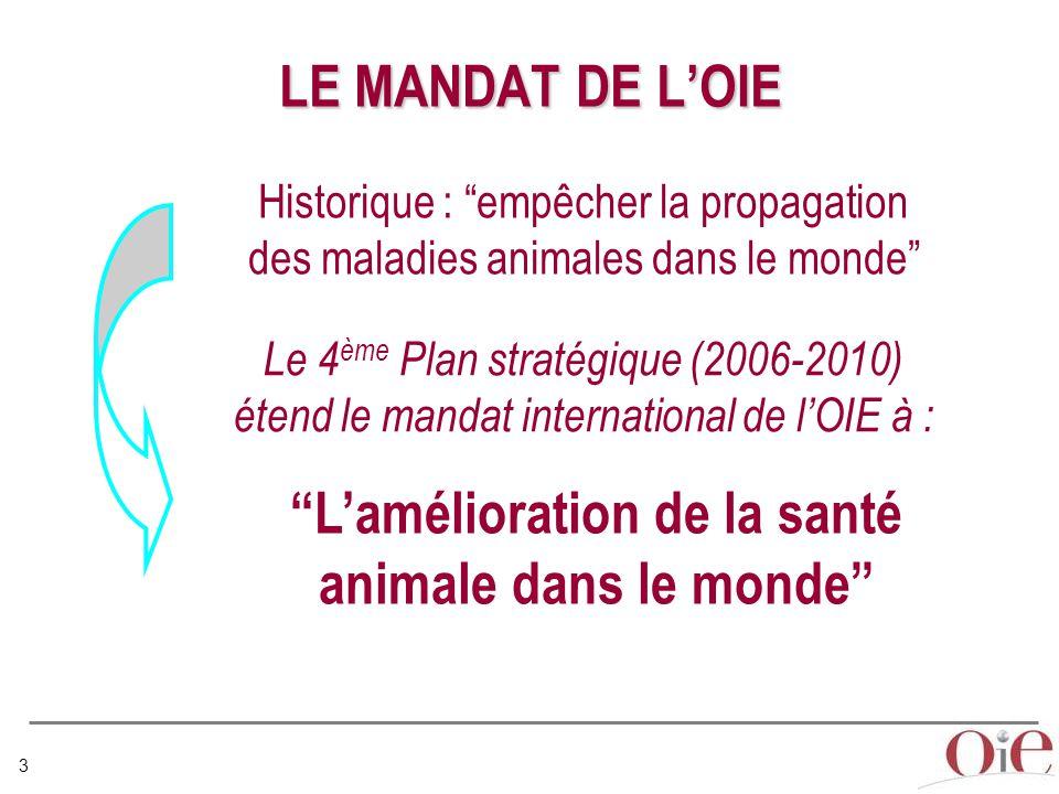 L'amélioration de la santé animale dans le monde