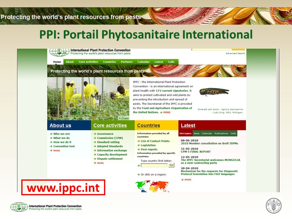 PPI: Portail Phytosanitaire International