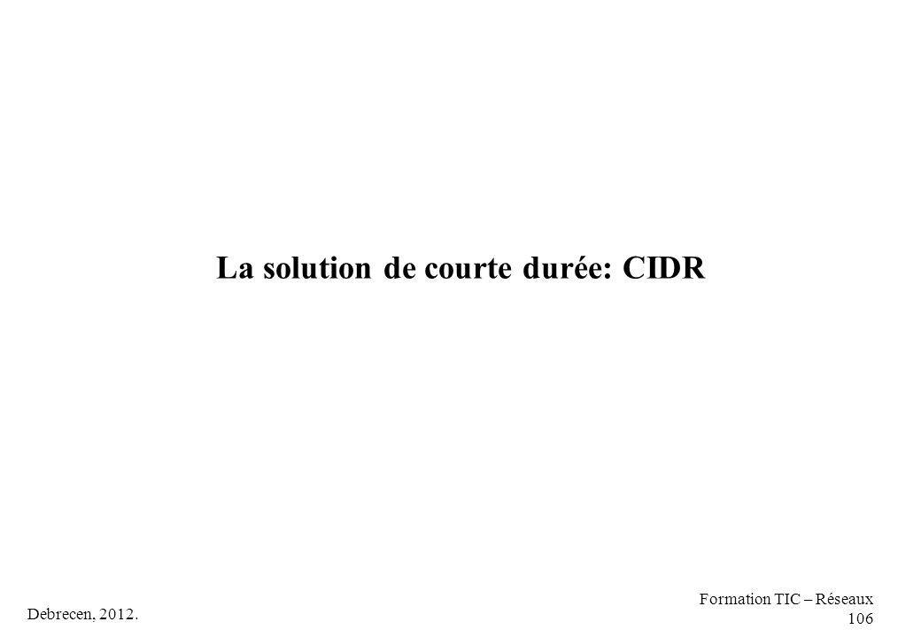 La solution de courte durée: CIDR