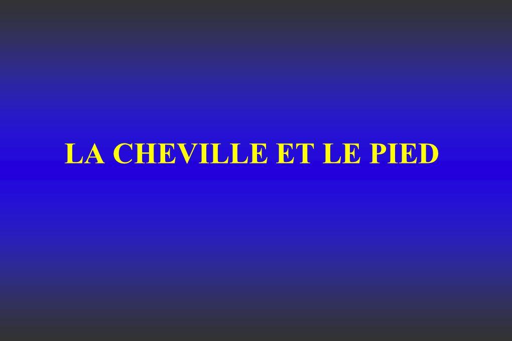 LA CHEVILLE ET LE PIED