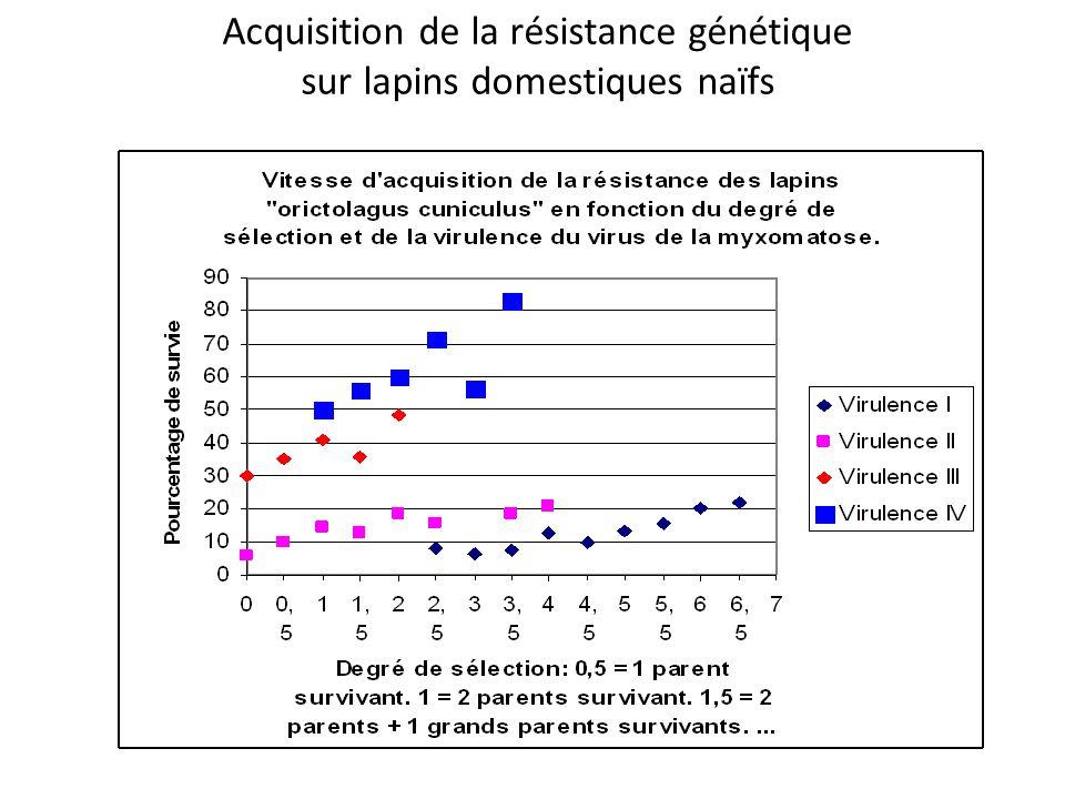 Acquisition de la résistance génétique sur lapins domestiques naïfs