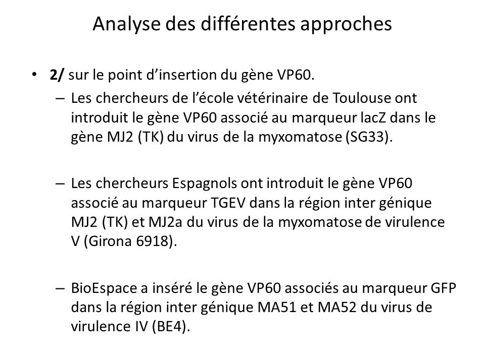 Analyse des différentes approches