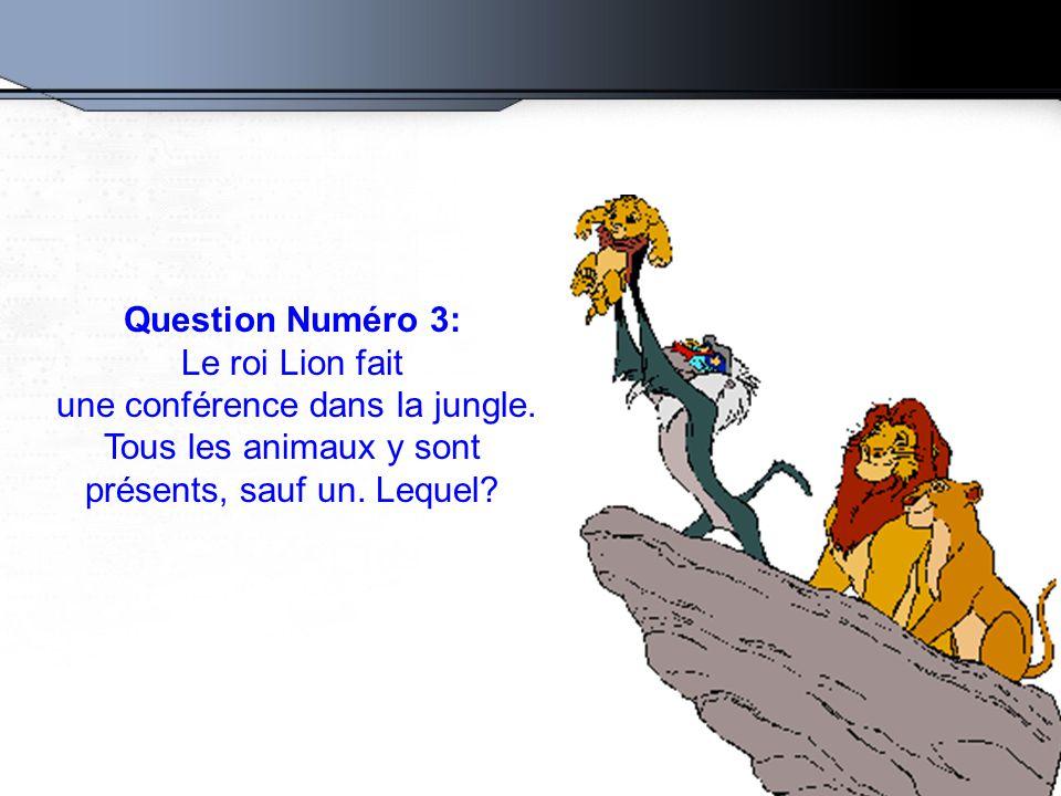 une conférence dans la jungle.