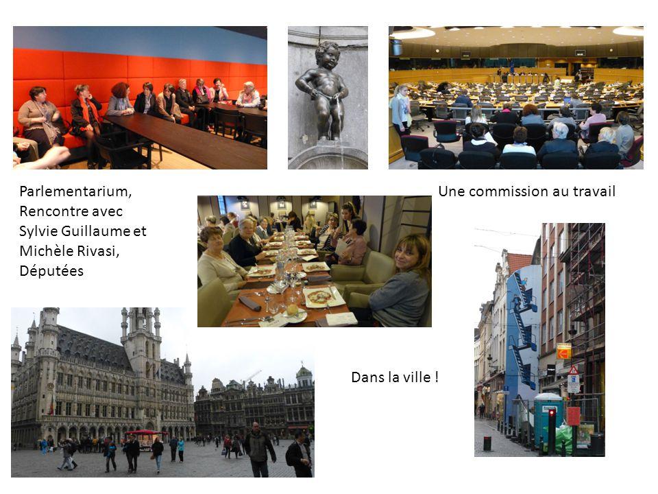 Parlementarium, Rencontre avec Sylvie Guillaume et Michèle Rivasi, Députées. Une commission au travail.