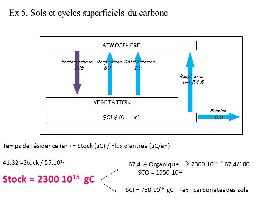 Photosynthèse Respiration Déforestation