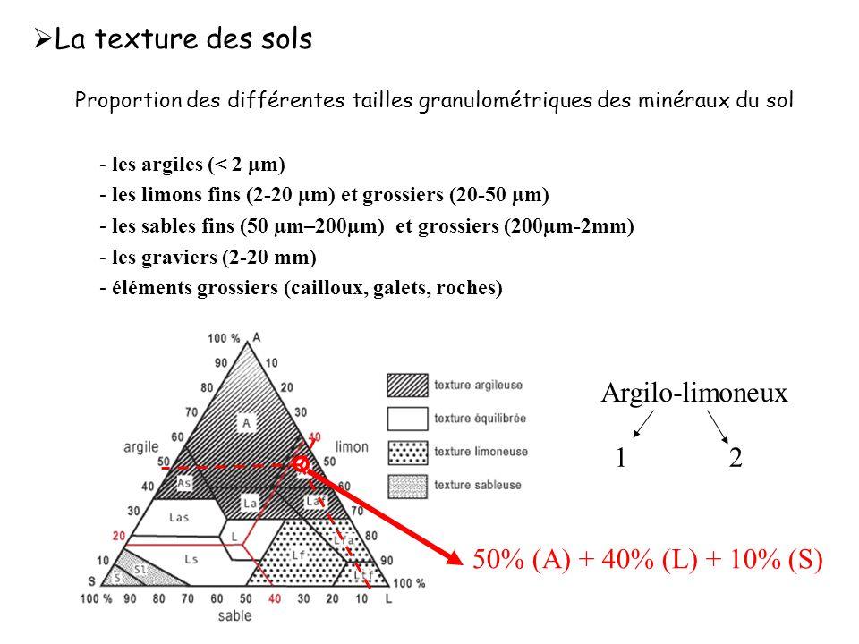 La texture des sols Argilo-limoneux 1 2 50% (A) + 40% (L) + 10% (S)