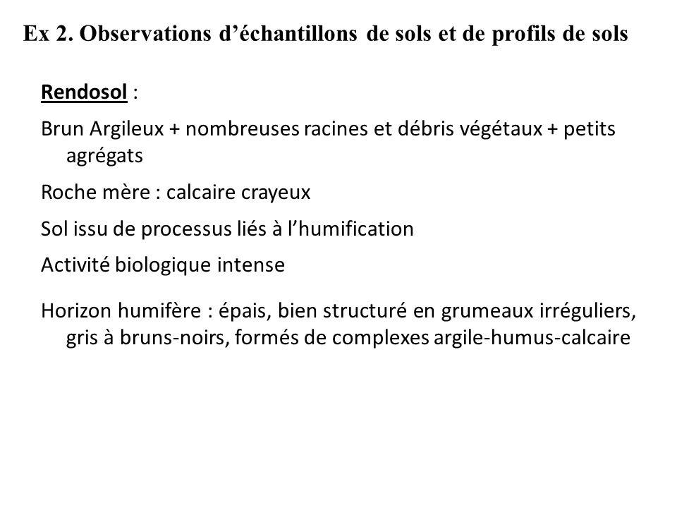 Ex 2. Observations d'échantillons de sols et de profils de sols