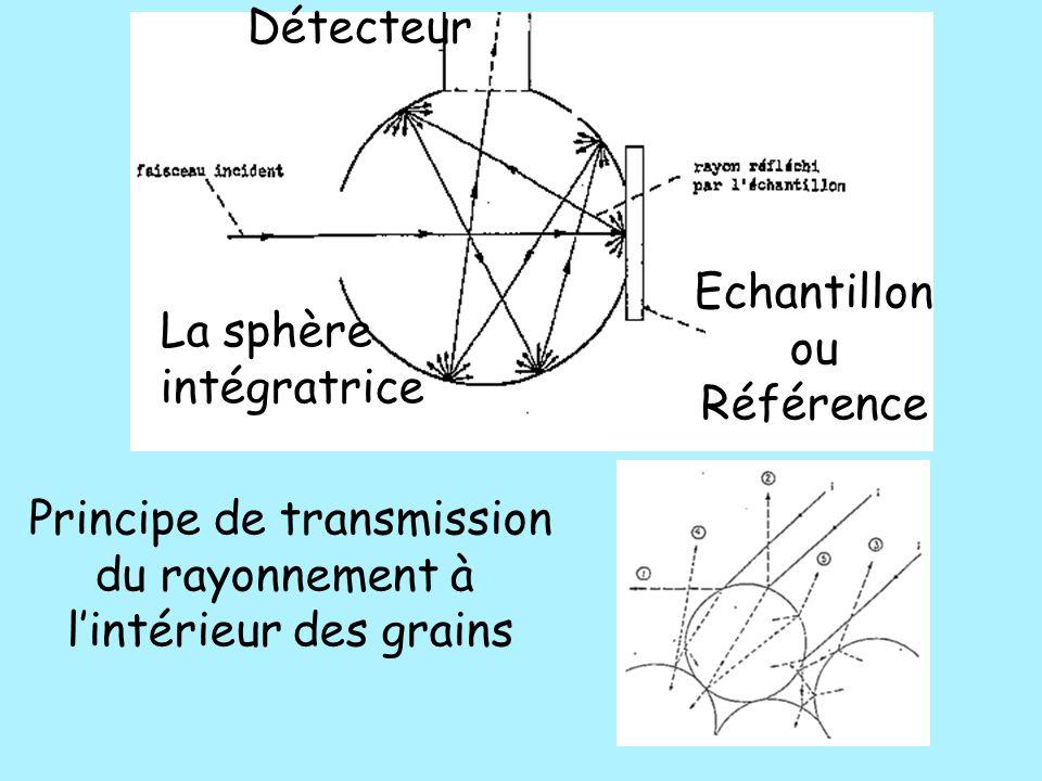 Principe de transmission du rayonnement à l'intérieur des grains