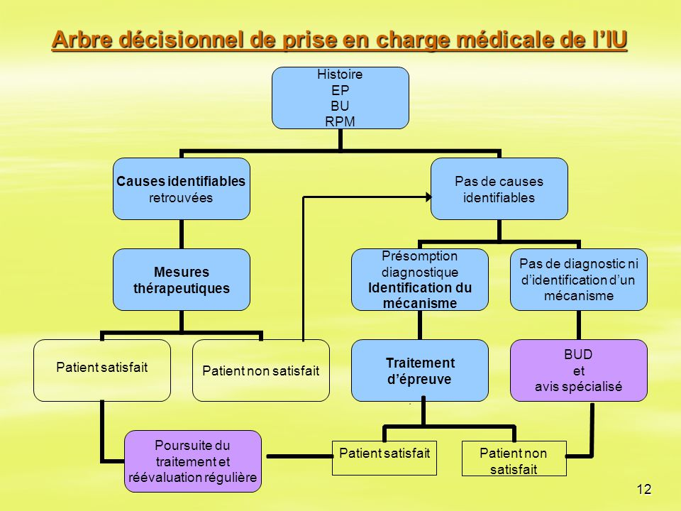 Arbre décisionnel de prise en charge médicale de l'IU