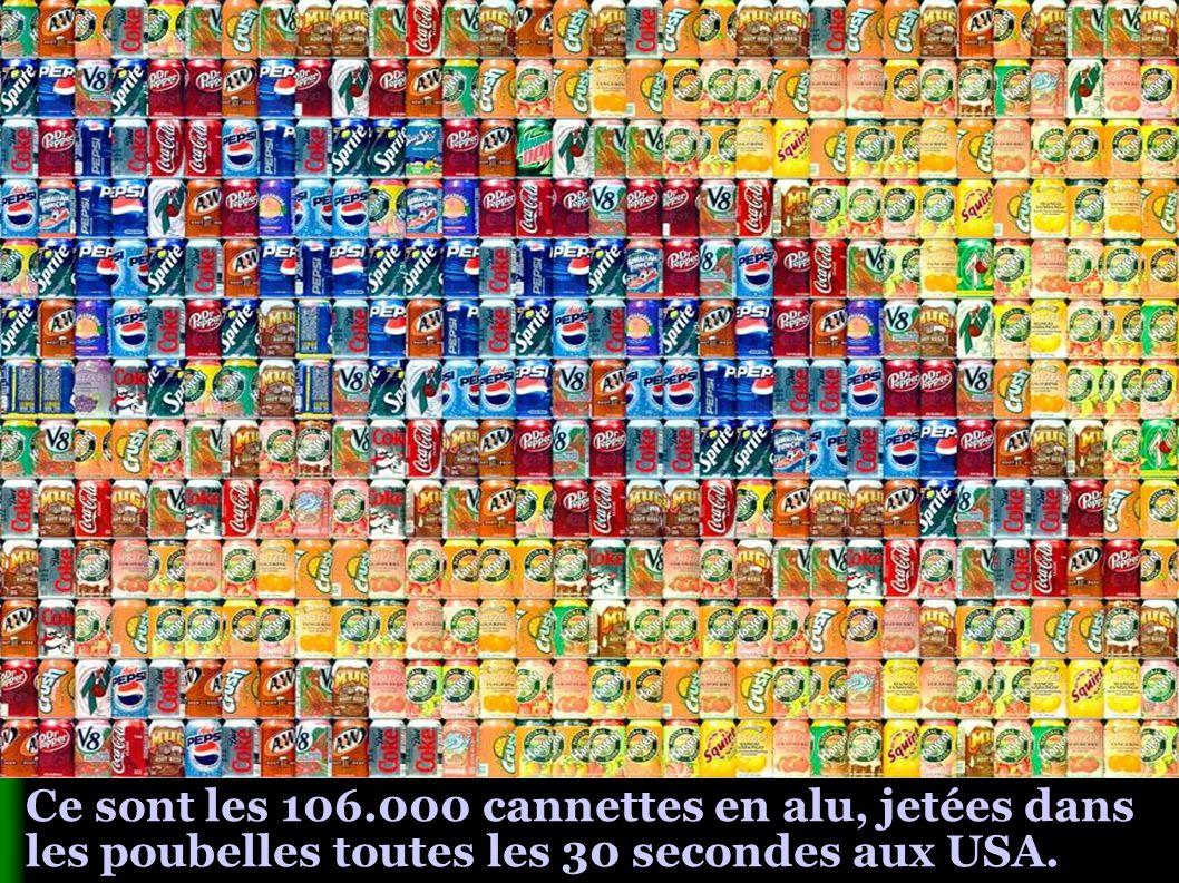 Ce sont les 106.000 cannettes en alu, jetées dans les poubelles toutes les 30 secondes aux USA.