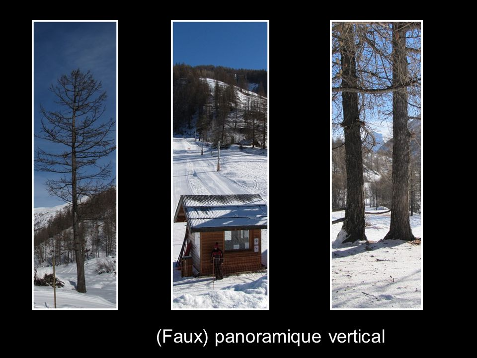 (Faux) panoramique vertical