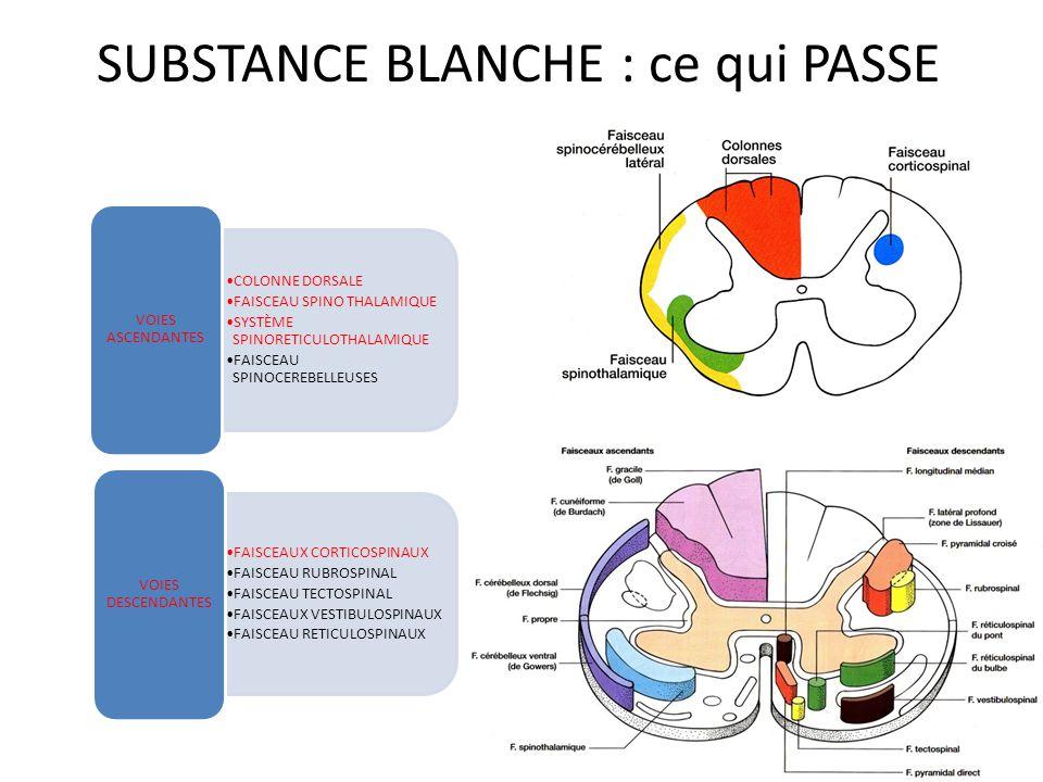 SUBSTANCE BLANCHE : ce qui PASSE