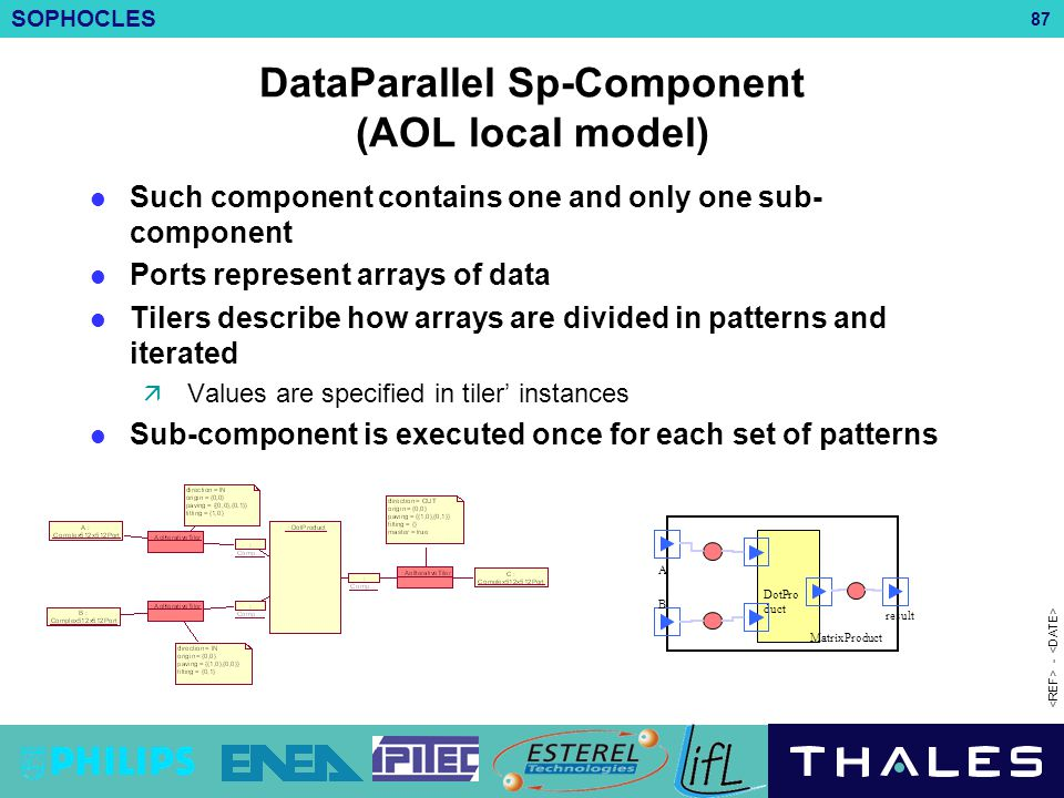 DataParallel Sp-Component (AOL local model)
