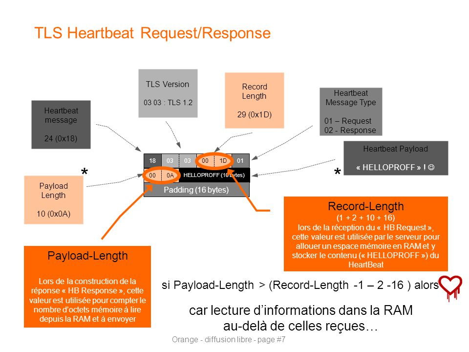 TLS Heartbeat Request/Response