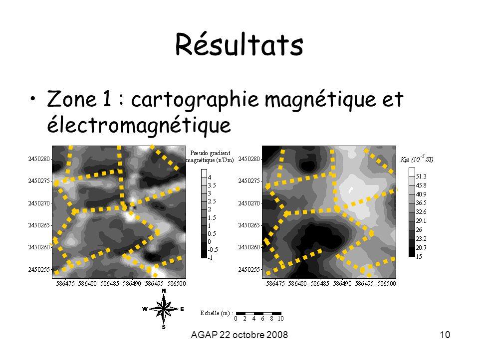 Résultats Zone 1 : cartographie magnétique et électromagnétique
