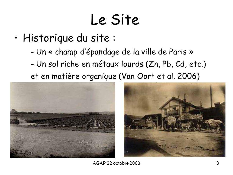 Le Site Historique du site :