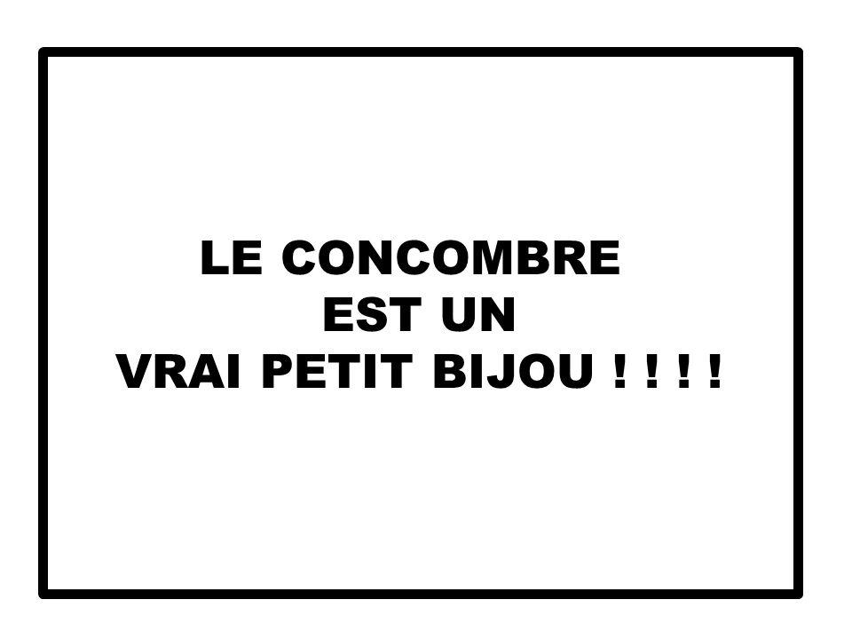 LE CONCOMBRE EST UN VRAI PETIT BIJOU ! ! ! !