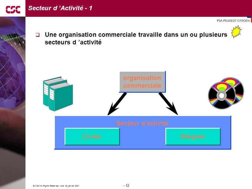 Secteur d 'Activité - 1 Une organisation commerciale travaille dans un ou plusieurs secteurs d 'activité.