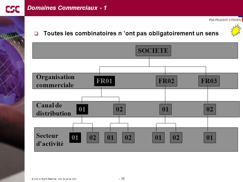 Domaines Commerciaux - 1