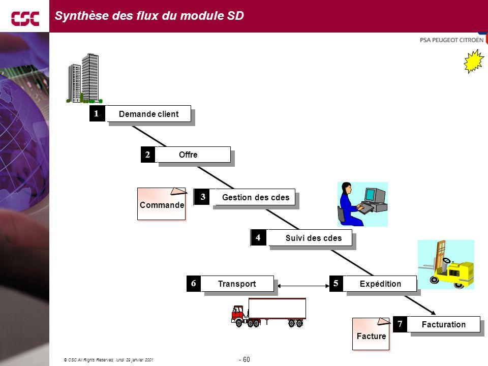 Synthèse des flux du module SD