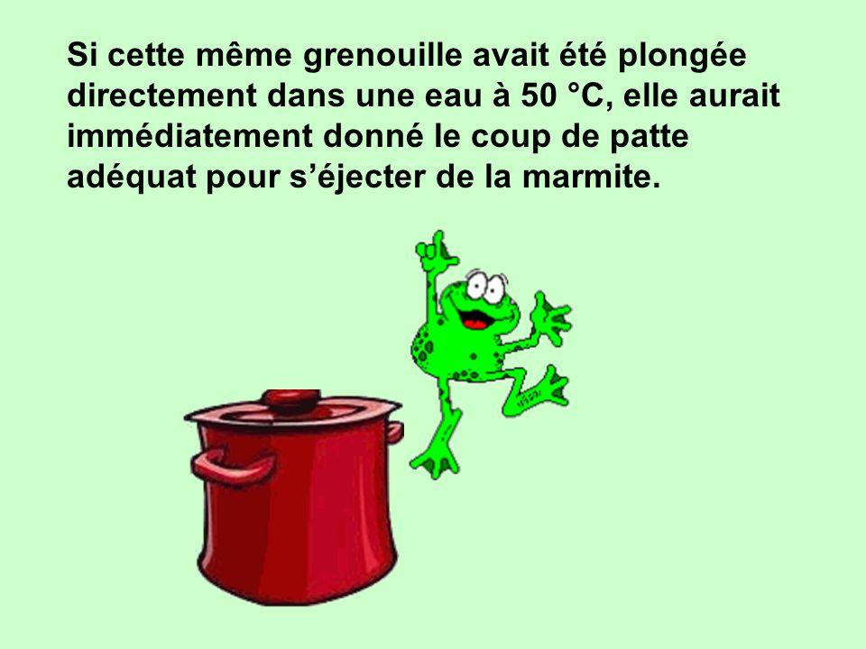 Si cette même grenouille avait été plongée directement dans une eau à 50 °C, elle aurait immédiatement donné le coup de patte adéquat pour s'éjecter de la marmite.