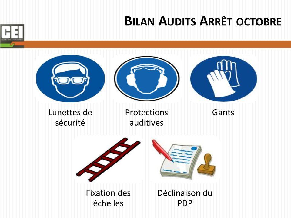 Bilan Audits Arrêt octobre