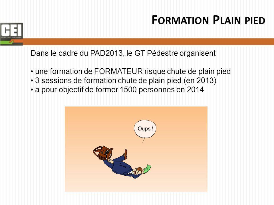 Formation Plain pied Dans le cadre du PAD2013, le GT Pédestre organisent. une formation de FORMATEUR risque chute de plain pied.