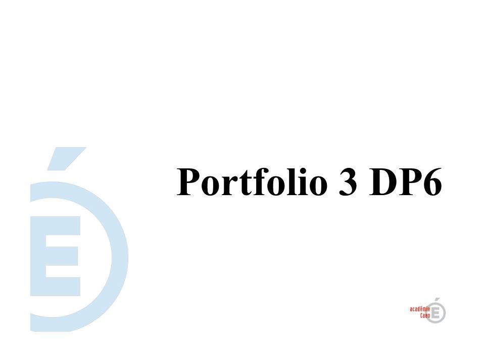 Portfolio 3 DP6