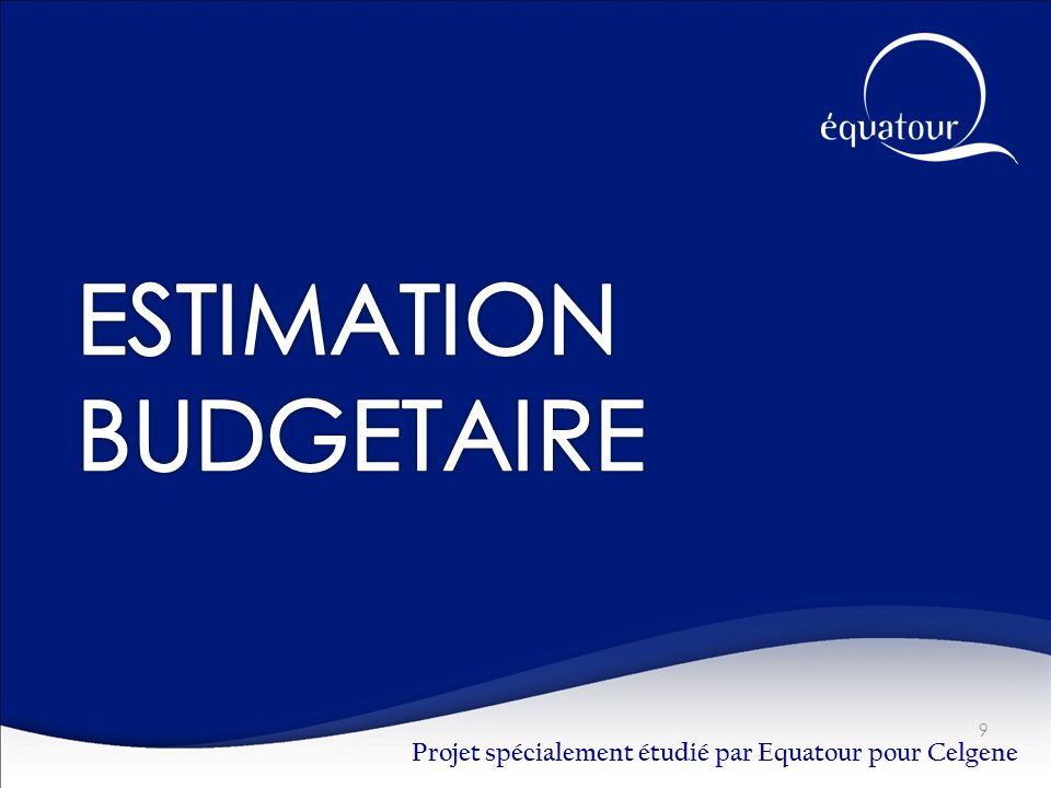 ESTIMATION BUDGETAIRE