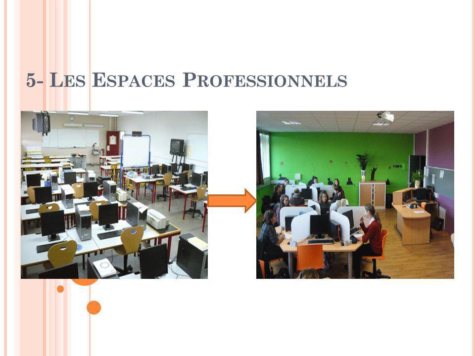 5- Les Espaces Professionnels