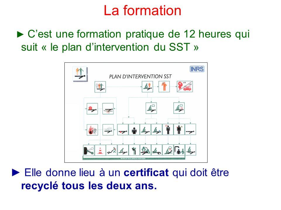La formation ► C'est une formation pratique de 12 heures qui suit « le plan d'intervention du SST »