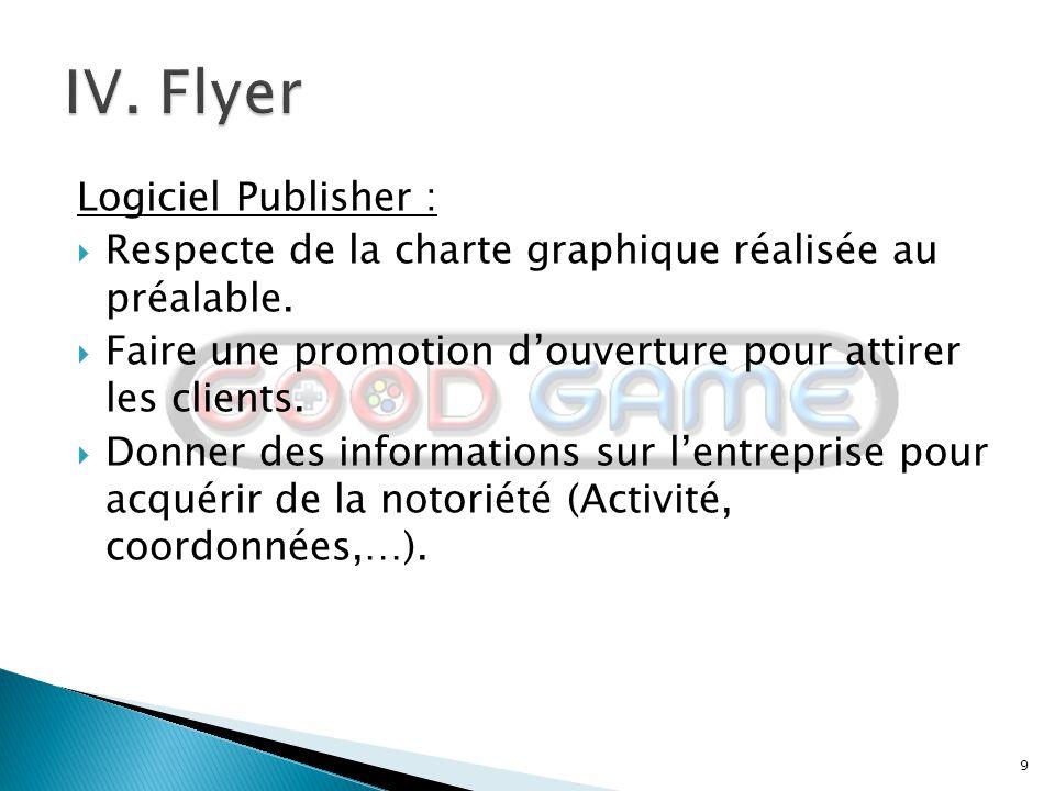 IV. Flyer Logiciel Publisher :