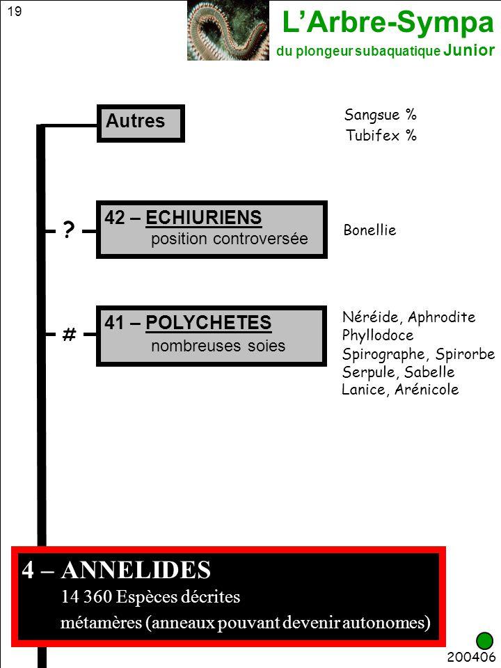 4 – ANNELIDES métamères (anneaux pouvant devenir autonomes) Autres