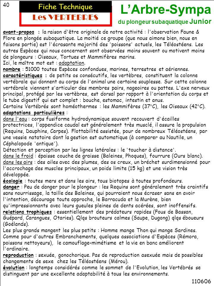 Les VERTEBRES Fiche Technique 110606
