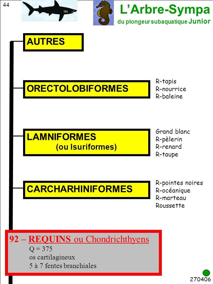 92 – REQUINS ou Chondrichthyens