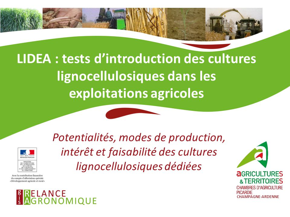 LIDEA : tests d'introduction des cultures lignocellulosiques dans les exploitations agricoles