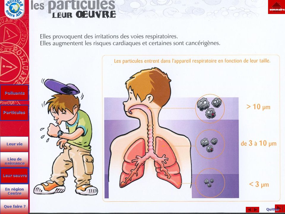 Polluants Particules Leur vie Lieu de naissance Leur oeuvre