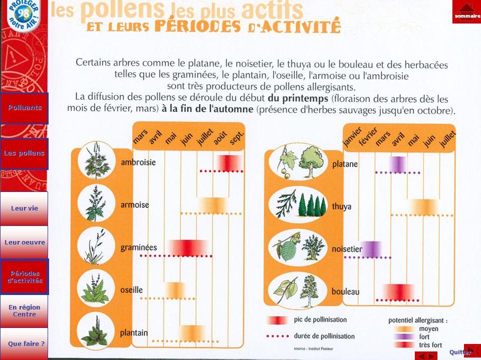 Polluants Les pollens Leur vie Leur oeuvre Périodes d'activités