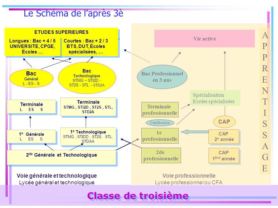 Le Schéma de l'après 3è APPRENTISSAGE Classe de troisième Vie active