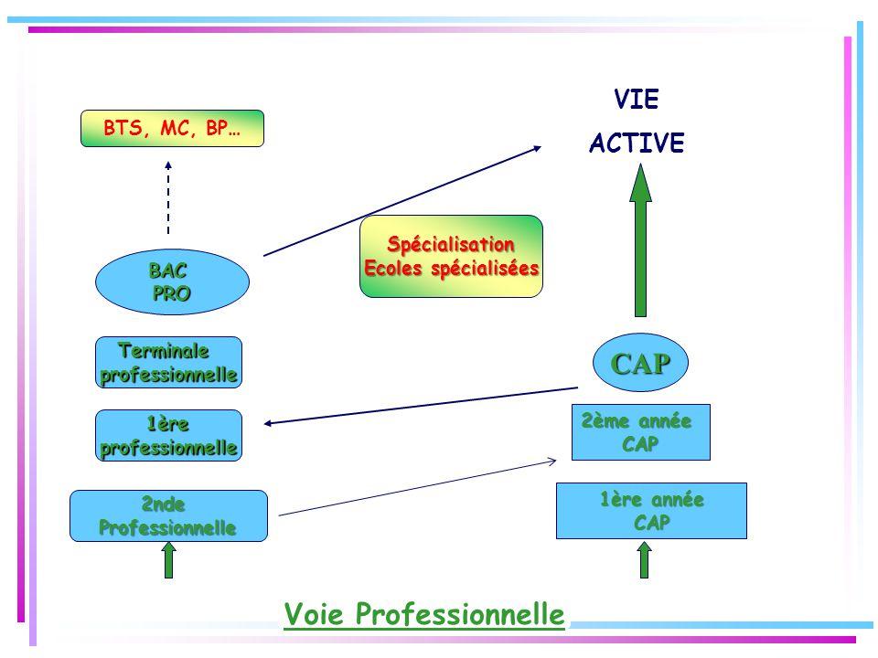 CAP Voie Professionnelle VIE ACTIVE BTS, MC, BP… Spécialisation