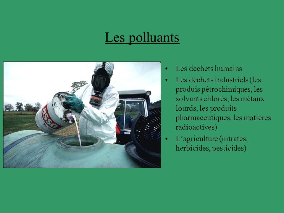 Les polluants Les déchets humains