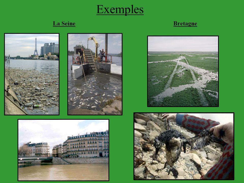 Exemples La Seine Bretagne