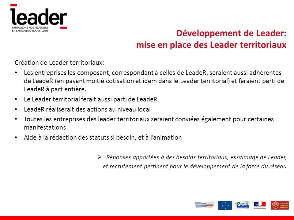Développement de Leader: mise en place des Leader territoriaux